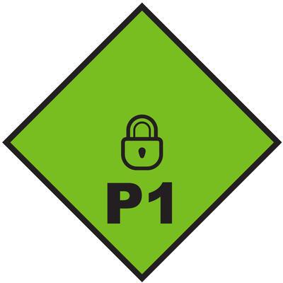 P1 Level Flag