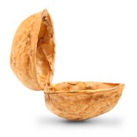 Open Nutshell