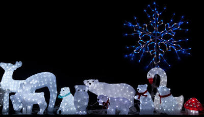 Animals in lights