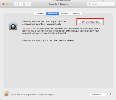Turn on FileVault