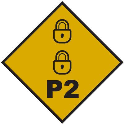 P2 Level Flag