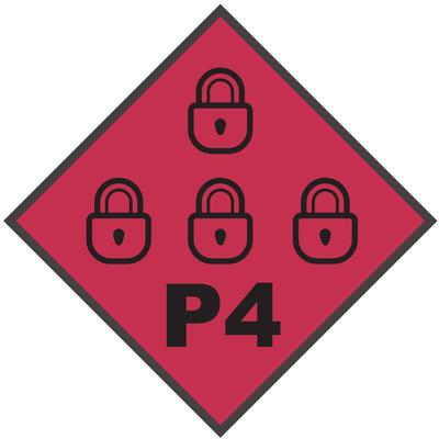 P4 Level Flag